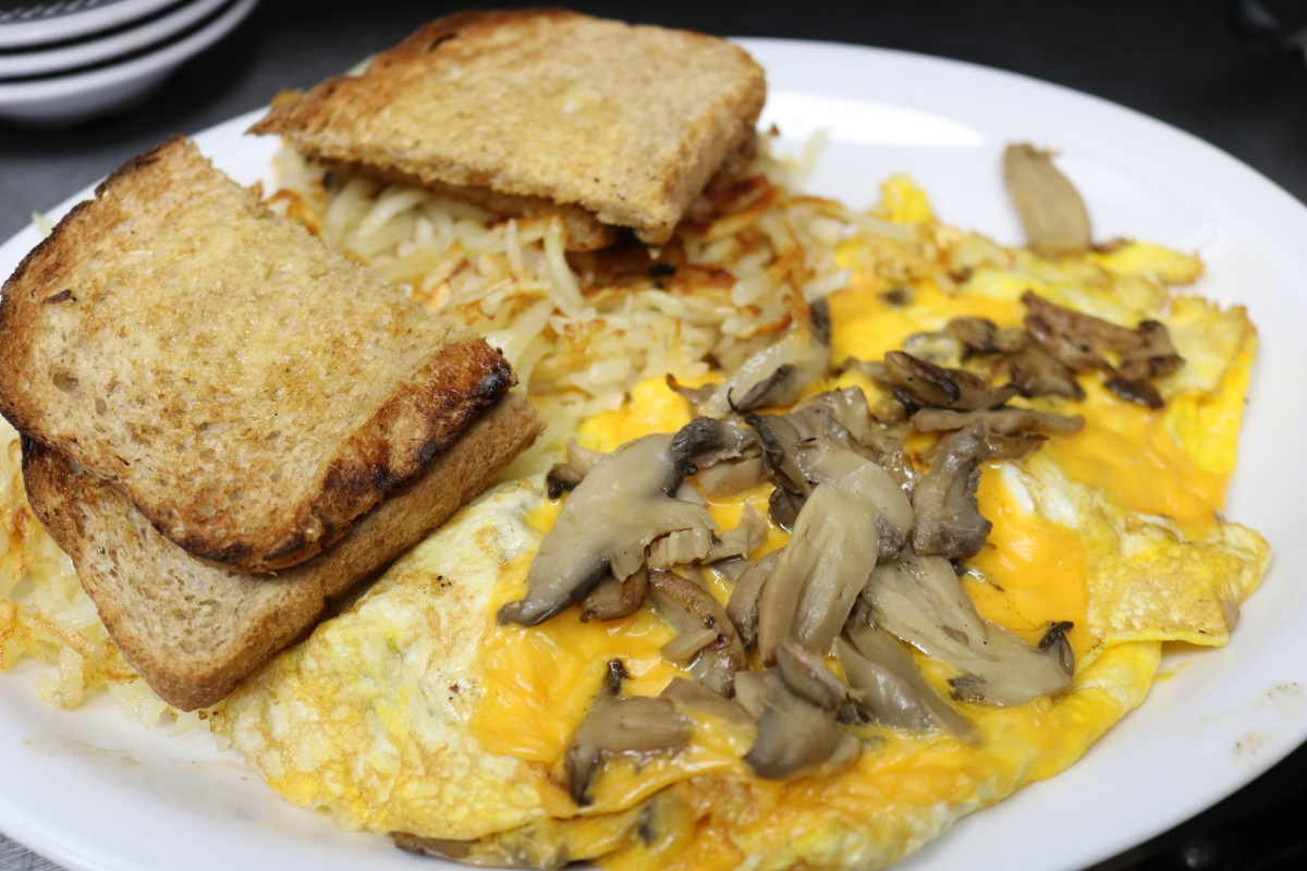 Mushrooms and Cheese Omelet